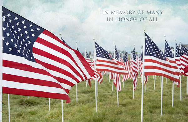 May 28 - Feeling very thankful today to those who gave their all...  #CY365 - Stars and Stripes Field of Honor 2018 Castaway Park Newport Beach, CA