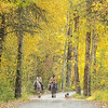October 14 - Happy trails to you...