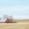 January 19 - I was excited to discover this red barn. I'm excited to see it in the snow, in the spring and in the summer as well...<br /> <br /> #365PictureToday - Excitement<br /> Color Week - Red