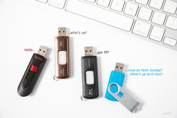 April 5 - I may have been self-isolated for a little too long...<br /> <br /> #365PictureToday - Flash Drive Day