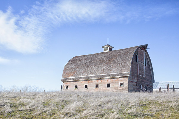 February 13 - There's an old barn around every corner...<br /> <br /> #365PictureToday - Retro/Relic