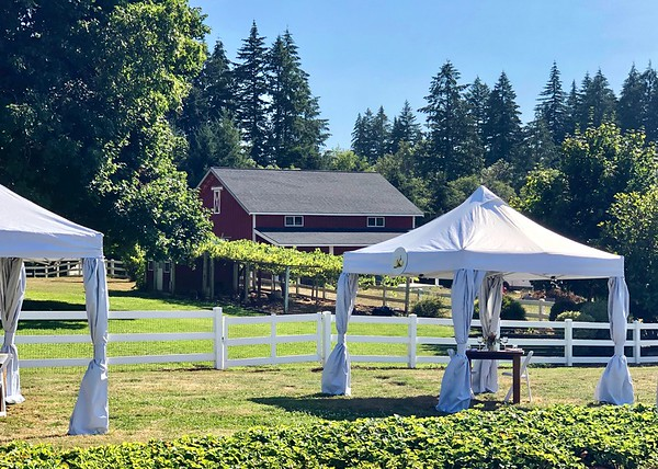 August 7 - Anticipating a good dinner at The Kitchen at Middleground Farms...<br /> <br /> Wilsonville, OR