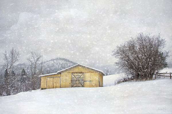 February 21 - This was taken last month, but I just loved this little yellow barn. No snow today - a sunny 47 degrees...almost time to break out the flip flops