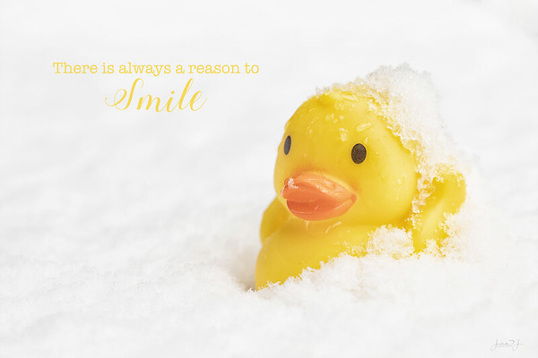 January 13 - Happy Rubber Ducky Day!  #365PictureToday - Rubber Ducky Day