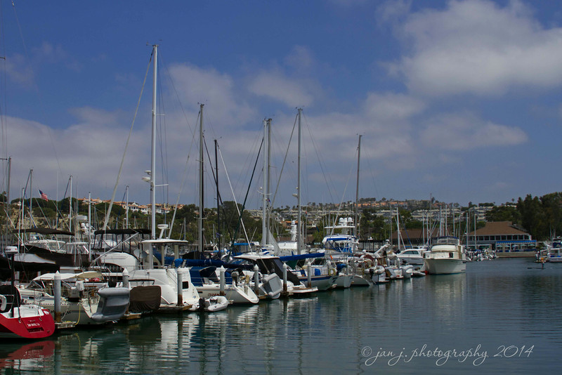 June 28 - It was a beautiful morning for a stroll through Dana Point Harbor.