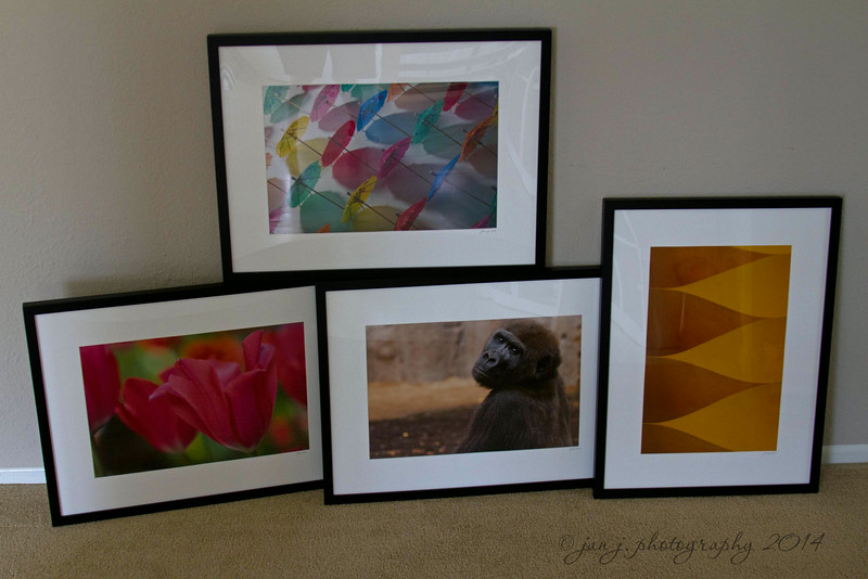 June 27 - Four images...matted, framed, and ready to be dropped off for exhibition at the Orange County Fair.