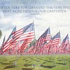 November 10 - I'm thankful to those who have served and are presently serving so I we may live in freedom...<br /> <br /> #CY365 - Currently Loving<br /> 2017 Field of Valor<br /> Handy Park<br /> Orange, CA