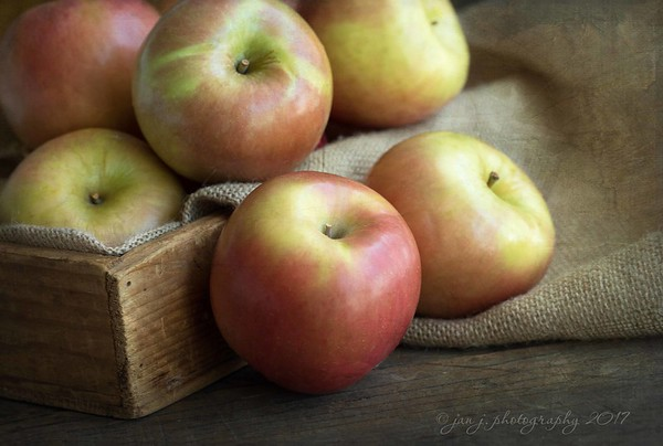 """October 11 - """"An apple a day...""""<br /> I'm thankful for the flavors of Fall.<br /> <br /> #CY365 - Fruit"""