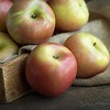 "October 11 - ""An apple a day...""<br /> I'm thankful for the flavors of Fall.<br /> <br /> #CY365 - Fruit"