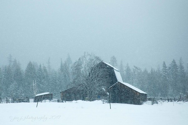 """February 26 - SNOW DAY!!!  I""""m thankful to be inside...<br /> <br /> Porthill, ID"""