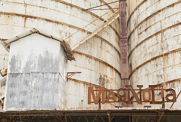 November 4 - When in Waco... I'm thankful for the opportunity to visit.  #CY365 - Warm/Outstanding Magnolia Market Waco, TX