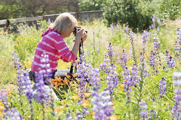 March 23 - I'm thankful for the CY365 community that gives me the opportunity to meet up with other photo-a-day friends/photographers who are just as happy as I am to spend hours in the flowers shooting...  #CY365 - Potential Fullerton Arboretum Fullerton, CA