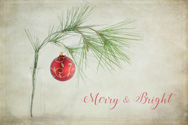 December 7 - May your days be Merry & Bright... I'm thankful for the joy He brings...  #CY365 - Whimsical Holiday