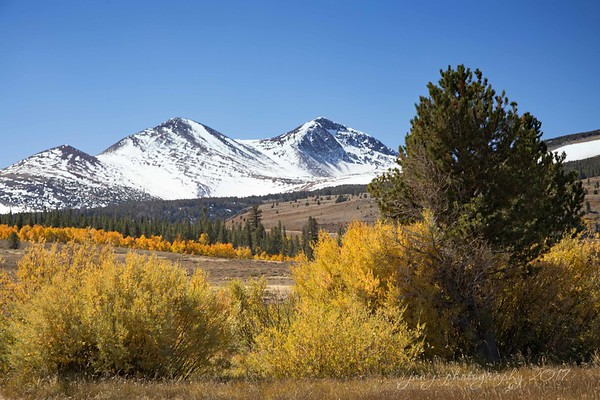 October 7 - Thankful beyond words to spend the entire day photographing the changing seasons...<br /> <br /> Mono County, CA