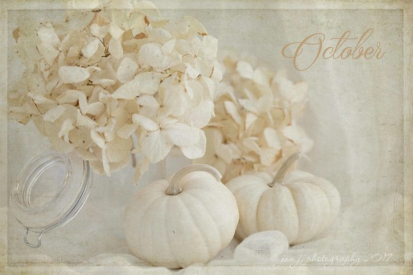 October 1 - So thankful that October has finally arrived...it's my favorite!<br /> <br /> #CY365 - Hello Fall