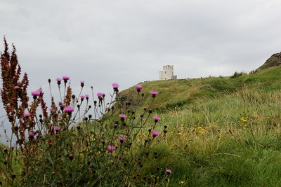 Day 230 - High Point (O'Brien's Tower)
