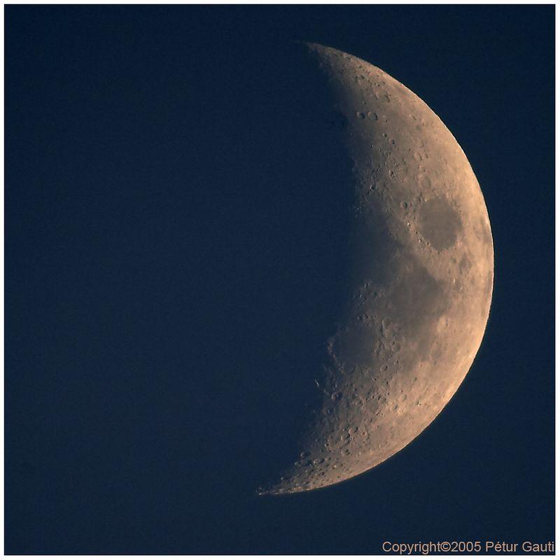 January 15th. Daytime moon. Shot through a telescope.