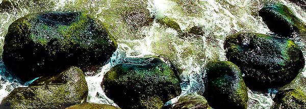 Foreshore rocks