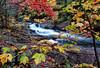 Falltime in Algonquin
