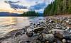 Harrison Lake Shoreline