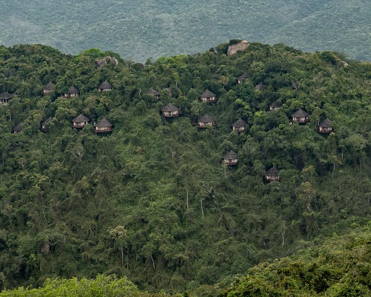 Bird Nest Resort