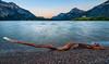 Waterton Lakes Log