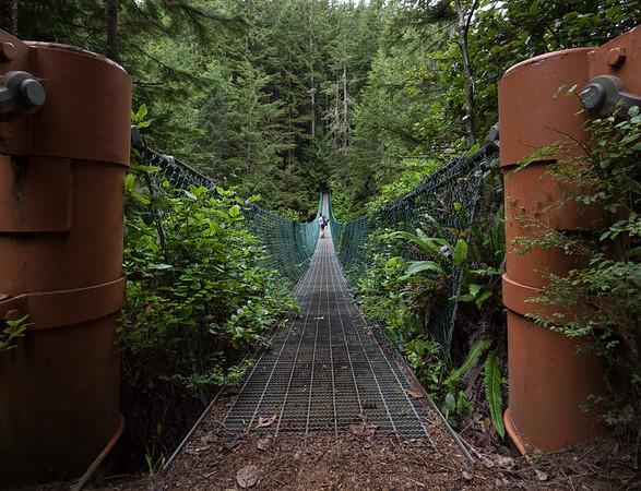 Juan de Fuca Trail Bridge