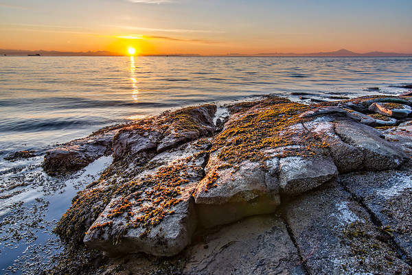 Morning Rocky Shore