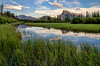 Vermilion Lakes Marshland