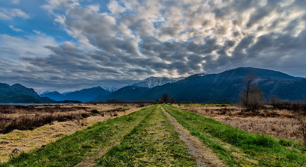 Pitt Meadows Grass Road