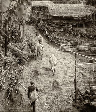 South Yunnan Slow Walk