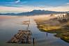 Pitt River Fog