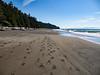 Beach Hking