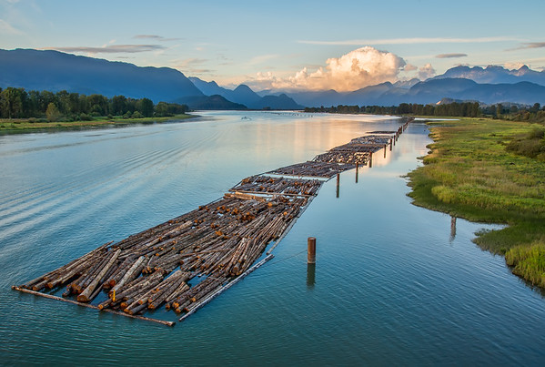 PItt River Bridge View