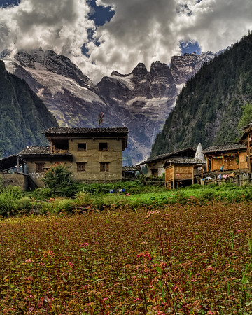 Lower Yubeng Town Crops