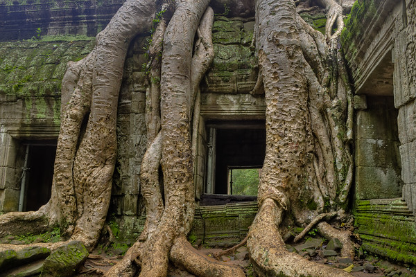 Root Window