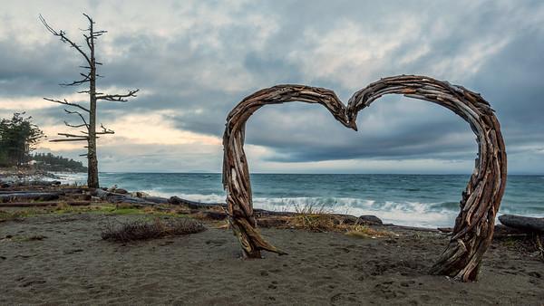 Kin Beach Provincial Park Drift Wood Heart
