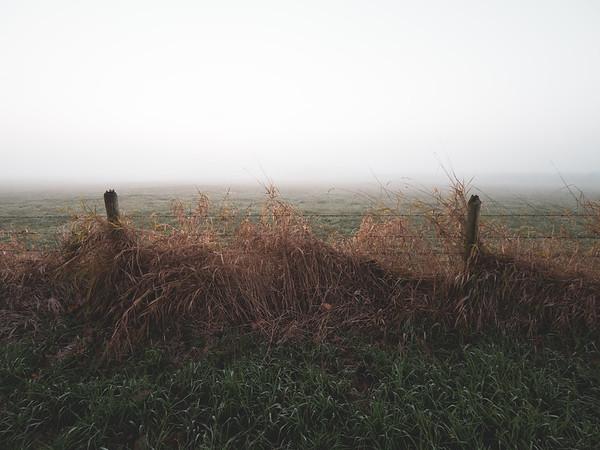 Final Fog