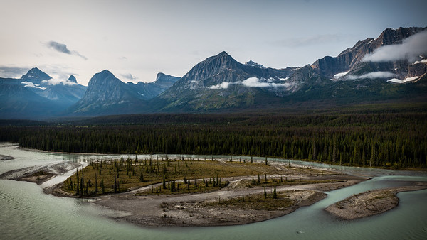 Athabasca River View