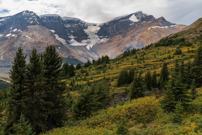 Jasper Snow Peaks