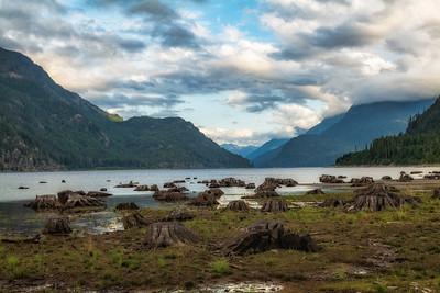 Lake side logging