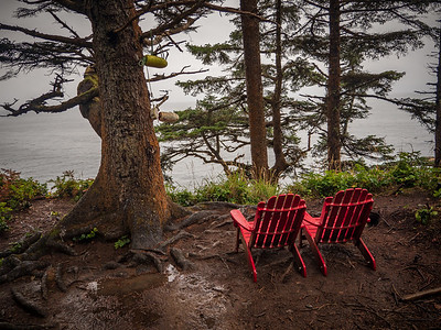 West Coast Trail Chairs