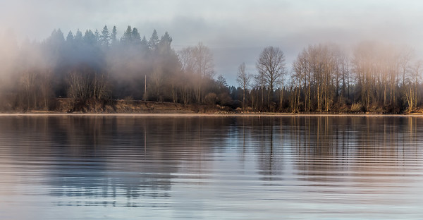Fraser River Misty Morning