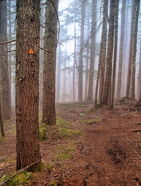 Baden Powell Trail Marker