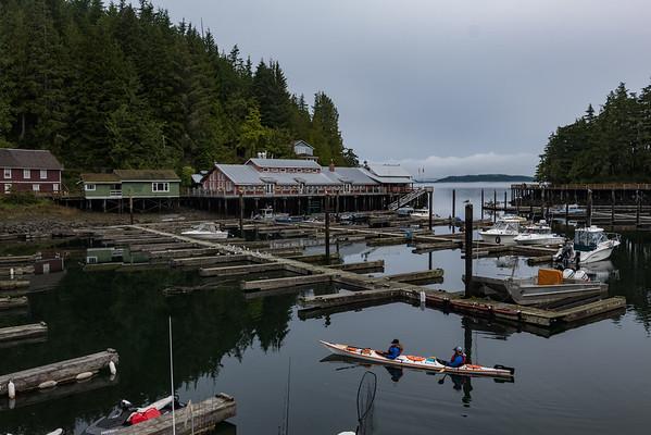 Telegraph Cove Kayakers