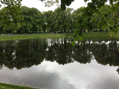 Reflections - 25