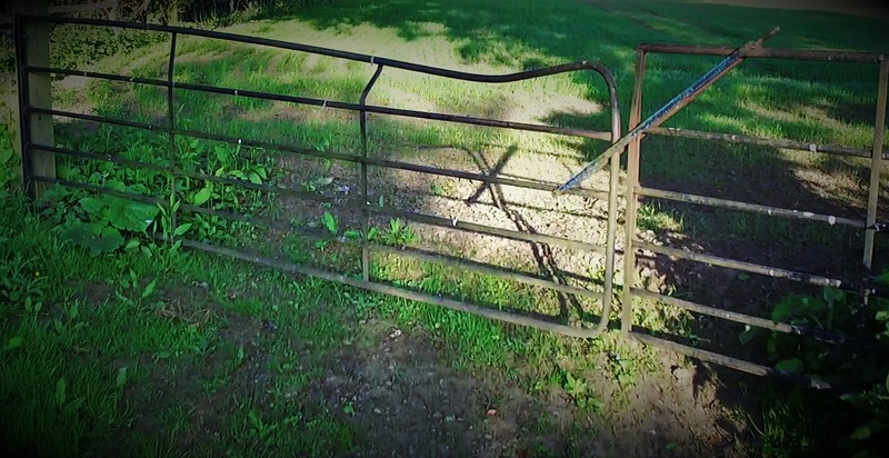 Springtime Gate with leaning dent