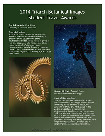 Triarch Botanical Images Awards