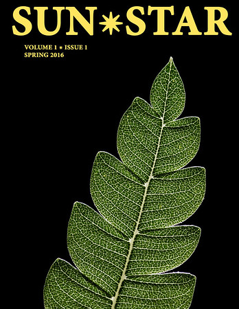 Cover photo (Catalina ironwood leaf) for the literary journal Sun Star Review, Spring 2016