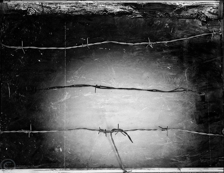 The Manzanar internment camp housed Japanese-Americans who were forced to leave their homes during World War II.  The barbed wire in the photo is echoed by a piece of barbed wire used an an overlay.